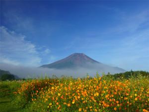 """ホームページ""""I live 富士山""""を公開しました。"""