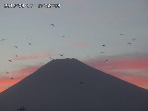夕暮れの富士の山