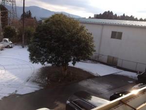 富士山~裾野~雪!!