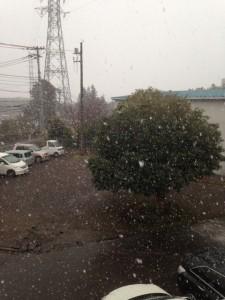 綿雪舞う(なごり雪)